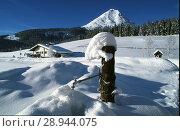 Купить «Leutasch, Austria, winter landscape in the Leutasch Valley», фото № 28944075, снято 23 мая 2002 г. (c) Caro Photoagency / Фотобанк Лори