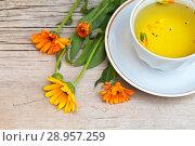 Купить «A cup of warm herbal tea from a medicinal calendula and an orange marigold flowers on an old wooden table», фото № 28957259, снято 4 июля 2018 г. (c) Виктория Катьянова / Фотобанк Лори