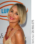 Купить «Lupus LA's Orange Ball: Rocket to a Cure - Arrivals Featuring: Sharon Stone Where: Los Angeles, California, United States When: 23 Apr 2017 Credit: FayesVision/WENN.com», фото № 28966075, снято 23 апреля 2017 г. (c) age Fotostock / Фотобанк Лори