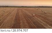 Haystack agriculture farm field view. Стоковое видео, видеограф Илья Шаматура / Фотобанк Лори