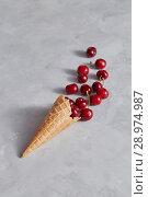 Купить «Sweet wafer cone with freshly picked red cherries on a gray background.», фото № 28974987, снято 30 мая 2018 г. (c) Ярослав Данильченко / Фотобанк Лори