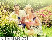 Купить «Young family gardening», фото № 28981771, снято 19 марта 2019 г. (c) Яков Филимонов / Фотобанк Лори