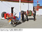 Купить «Тибет, город Дорчен, Лошадь и мопед у стены жилого дома», фото № 28989851, снято 18 июня 2018 г. (c) Овчинникова Ирина / Фотобанк Лори