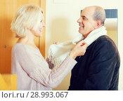 Купить «Portrait of happy senior spouses», фото № 28993067, снято 20 сентября 2018 г. (c) Яков Филимонов / Фотобанк Лори