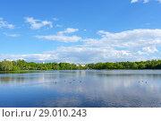 Купить «Большой Головинский пруд и зона отдыха в Головинском районе Москвы», фото № 29010243, снято 27 мая 2017 г. (c) Ирина Носова / Фотобанк Лори
