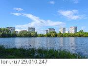 Большой Головинский пруд и парк в Головинском районе Москвы (2017 год). Стоковое фото, фотограф Ирина Носова / Фотобанк Лори