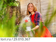 Купить «Woman watering garden flowers with hose sprinkler», фото № 29010367, снято 8 мая 2018 г. (c) Сергей Новиков / Фотобанк Лори