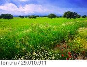 Купить «dramatic landscape with rain clouds», фото № 29010911, снято 12 мая 2016 г. (c) Яков Филимонов / Фотобанк Лори