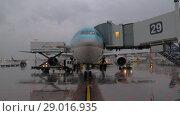 Купить «Deboarding and unloading cargo of Korean Air aircraft», видеоролик № 29016935, снято 4 октября 2017 г. (c) Данил Руденко / Фотобанк Лори