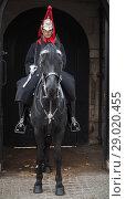Купить «Horse Guards of Whitehall in London», фото № 29020455, снято 29 октября 2017 г. (c) EugeneSergeev / Фотобанк Лори
