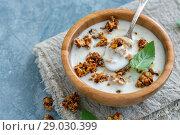 Купить «Natural yogurt with oat flakes and nuts in honey», фото № 29030399, снято 24 августа 2018 г. (c) Марина Сапрунова / Фотобанк Лори