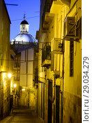 Купить «Street of the old town of Alicante, Valencia, Spain», фото № 29034279, снято 23 декабря 2016 г. (c) age Fotostock / Фотобанк Лори