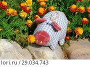 Купить «Плюшевая свинка на клумбе с бархатцами», эксклюзивное фото № 29034743, снято 31 августа 2018 г. (c) Елена Коромыслова / Фотобанк Лори