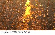 Купить «Falling golden drops water of fountain on sunset. Solar path on the water. Slow», видеоролик № 29037519, снято 23 февраля 2019 г. (c) Dmitry Domashenko / Фотобанк Лори