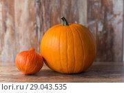 Купить «pumpkin and red kuri squash on wooden background», фото № 29043535, снято 18 сентября 2017 г. (c) Syda Productions / Фотобанк Лори