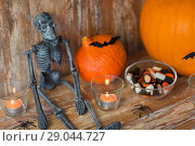 Купить «halloween pumpkins, skeleton and candies», фото № 29044727, снято 18 сентября 2017 г. (c) Syda Productions / Фотобанк Лори