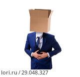Купить «Businessman with blank box on his head», фото № 29048327, снято 24 октября 2017 г. (c) Elnur / Фотобанк Лори