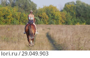 Young girl jockey in a baseball cap riding a horse on the field towards the forest. Стоковое видео, видеограф Константин Шишкин / Фотобанк Лори