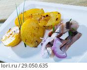 Купить «Slices of mild-cured herring with fried potatoes and onions served on plate», фото № 29050635, снято 21 октября 2018 г. (c) Яков Филимонов / Фотобанк Лори