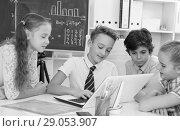 Купить «Teens male and female discussing near blackboard», фото № 29053907, снято 12 октября 2017 г. (c) Яков Филимонов / Фотобанк Лори