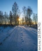 Купить «Sunset in the winter forest», фото № 29054743, снято 25 ноября 2012 г. (c) Юрий Бизгаймер / Фотобанк Лори