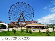 Sochi, Russia - June 6. 2018. Ferris wheel in Sochi Park, which entered TOP-25 of best parks in Europe in 2016. Редакционное фото, фотограф Володина Ольга / Фотобанк Лори