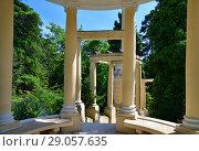 Купить «Greek arbor in arboretum in Sochi, Russia», фото № 29057635, снято 5 июня 2018 г. (c) Володина Ольга / Фотобанк Лори