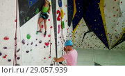 Купить «Sporty couple of climbers dressed in rock climbing outfit training at bouldering gym», видеоролик № 29057939, снято 25 августа 2018 г. (c) Яков Филимонов / Фотобанк Лори