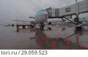 Купить «Korean Air plane after arrival to Sheremetyevo Airport, Moscow», видеоролик № 29059523, снято 4 октября 2017 г. (c) Данил Руденко / Фотобанк Лори