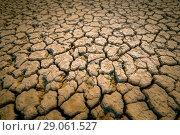 Купить «The silt, clay covered with deep cracks during low tide at sea. Tilt-shift», фото № 29061527, снято 29 сентября 2017 г. (c) Олег Белов / Фотобанк Лори