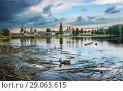 Купить «Иверский монастырь и утки Iversky monastery and ducks», фото № 29063615, снято 19 августа 2018 г. (c) Baturina Yuliya / Фотобанк Лори