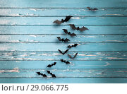 Купить «black bats over blue shabby boards background», фото № 29066775, снято 6 июля 2017 г. (c) Syda Productions / Фотобанк Лори