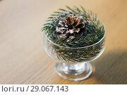 Купить «christmas fir decoration with cone in dessert bowl», фото № 29067143, снято 15 ноября 2017 г. (c) Syda Productions / Фотобанк Лори
