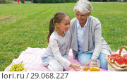 Купить «grandmother and granddaughter at picnic in park», видеоролик № 29068227, снято 24 августа 2018 г. (c) Syda Productions / Фотобанк Лори
