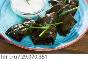 Купить «Stuffed grape leaves with assorted fillings», фото № 29070351, снято 21 января 2020 г. (c) Яков Филимонов / Фотобанк Лори