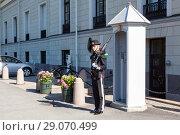 Купить «Королевская гвардия Норвегии. Гвардеец несет охрану на посту у дворца. Осло, Норвегия», фото № 29070499, снято 3 июля 2018 г. (c) Кекяляйнен Андрей / Фотобанк Лори