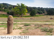 Купить «Prehistoric stone statue of Menhir in Filitosa», фото № 29082551, снято 20 августа 2018 г. (c) EugeneSergeev / Фотобанк Лори
