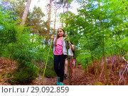 Girl walk in forest with summer camp hiking class. Стоковое фото, фотограф Сергей Новиков / Фотобанк Лори