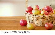 Купить «ripe apples in wicker basket on wooden table», видеоролик № 29092875, снято 7 сентября 2018 г. (c) Syda Productions / Фотобанк Лори