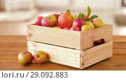 Купить «ripe apples in wooden box on table», видеоролик № 29092883, снято 7 сентября 2018 г. (c) Syda Productions / Фотобанк Лори