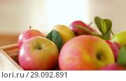 Купить «ripe apples in wooden box on table», видеоролик № 29092891, снято 7 сентября 2018 г. (c) Syda Productions / Фотобанк Лори