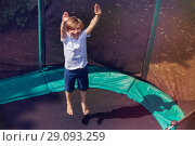 Купить «Excited boy bouncing on the trampoline outdoors», фото № 29093259, снято 20 мая 2018 г. (c) Сергей Новиков / Фотобанк Лори