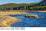 Madison river, Yellowstone National Park, USA. Стоковое фото, фотограф Ivan Vdovin / age Fotostock / Фотобанк Лори