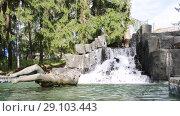Купить «Imatra, Suomi or Finland», видеоролик № 29103443, снято 23 мая 2017 г. (c) Сергей Петерман / Фотобанк Лори