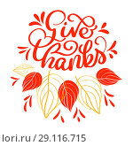 Купить «Hand drawn Give thanks typography text. Celebration quote for greeting card, postcard, event icon logo or badge. Vector vintage style autumn calligraphy. Red Lettering with red maple leaves», иллюстрация № 29116715 (c) Happy Letters / Фотобанк Лори