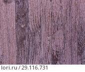 Купить «lilac wooden planks texture», фото № 29116731, снято 6 августа 2018 г. (c) Дмитрий Кутлаев / Фотобанк Лори