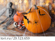 Купить «halloween pumpkins, skeleton and candies», фото № 29123659, снято 18 сентября 2017 г. (c) Syda Productions / Фотобанк Лори