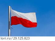 Poland flag (2015 год). Стоковое фото, фотограф Илья Галахов / Фотобанк Лори