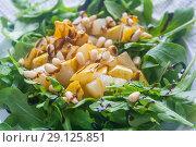 Купить «Свежий салат из рукколы», фото № 29125851, снято 16 сентября 2018 г. (c) Наталья Федорова / Фотобанк Лори