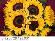Купить «Букет из подсолнухов», фото № 29125931, снято 8 августа 2018 г. (c) Литвяк Игорь / Фотобанк Лори